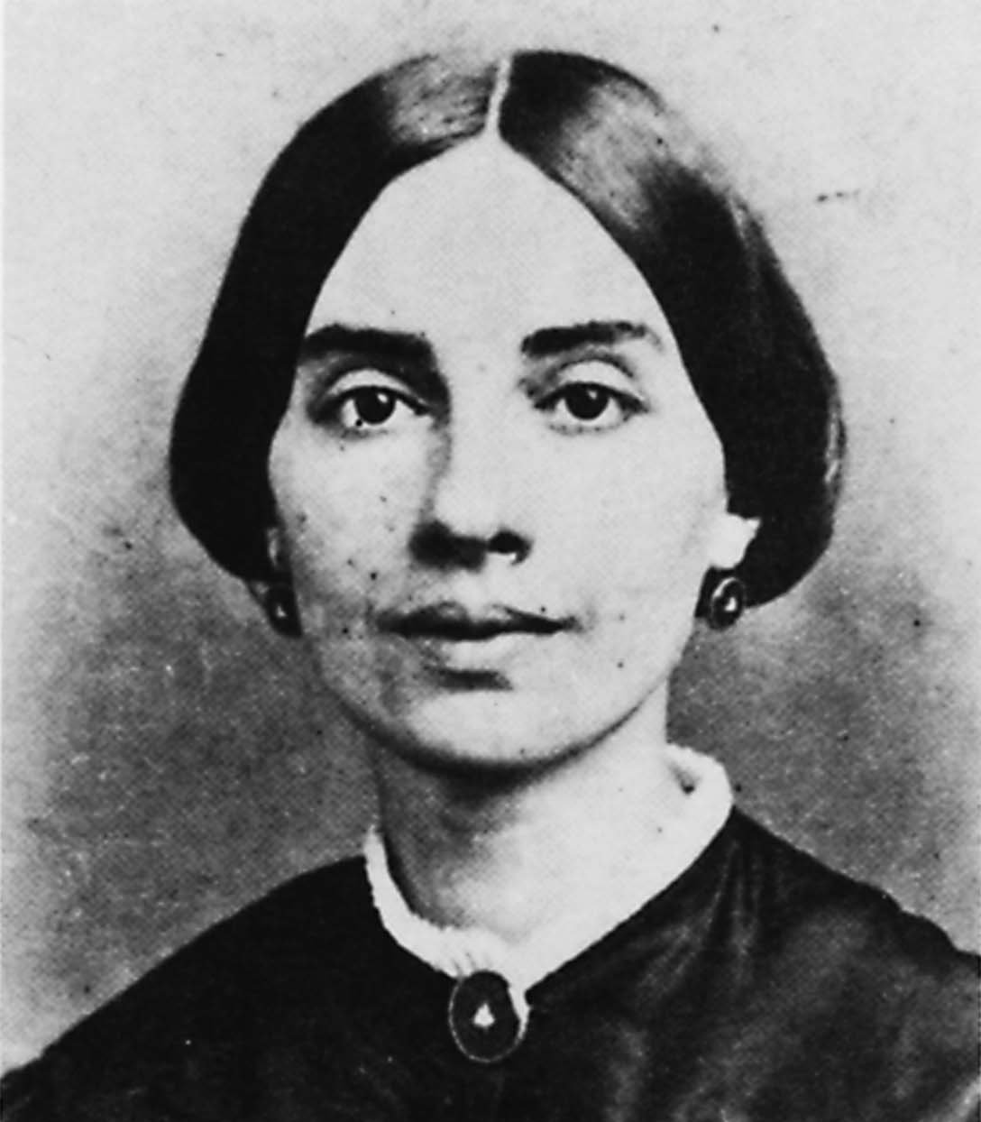 "a summary of the life and works of emily elizabeth dickinson Emily dickinson & her irish friends: plus the remarkable work of fiction—""emily's pallbearer the life of emily dickinson masako takeda."